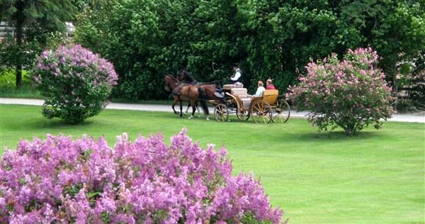 Grand Hotel & Lilac Festival