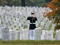 Veteran's Day in Washington DC