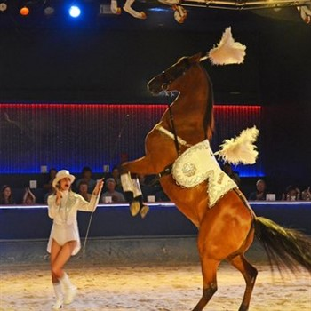 The Dancing Horses Dinner Theatre 2021